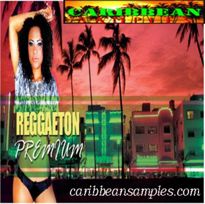 Product picture Reggaeton premium-Wav construction kits