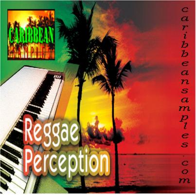 Product picture Reggae perecption-16 construction kits-Wav